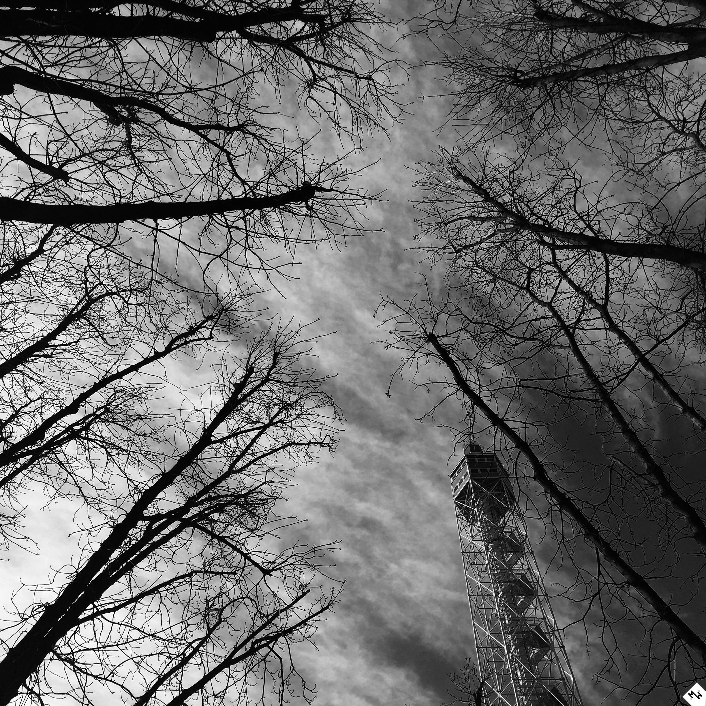 ©2010 Parco Sempione, Milano